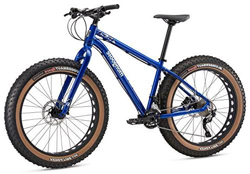 argus comp fat tire bicycle