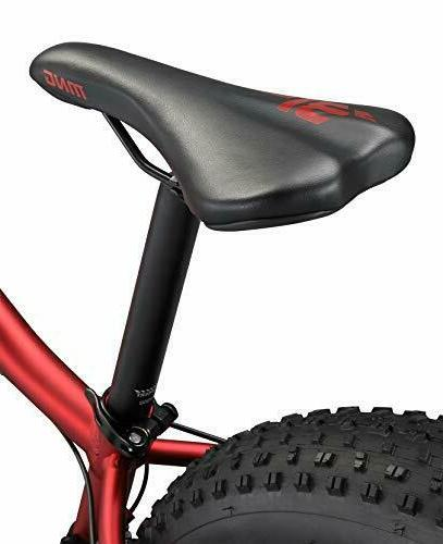 Mongoose Fat Mountain 24-Inch Small