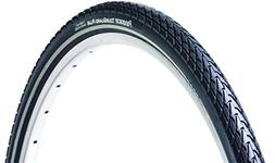 panaracer Tour Guard Plus Tire with Wire Bead, 700 x 38C